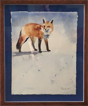 Red Fox in Bethel Snow, 2017