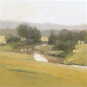 Meandering Study