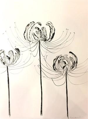 Spider Lily Trio