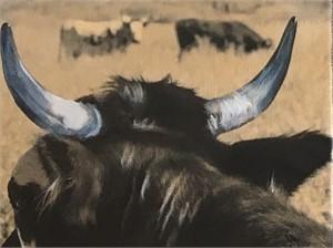 Brown Bull 1904