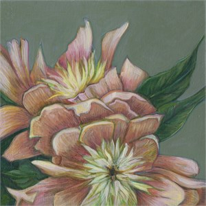 Study for Casar Peony