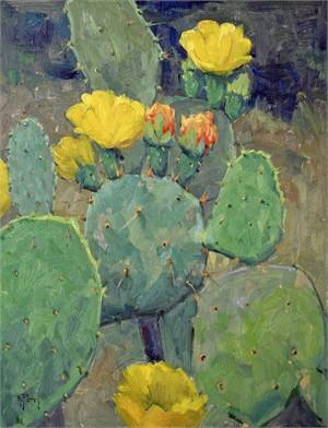 Blooming Cacti, 2019
