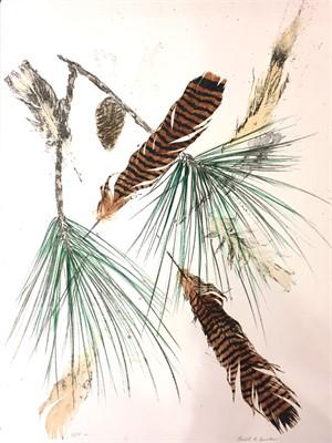 Turkey Feathers & Pine