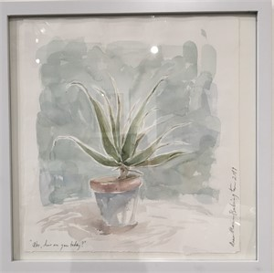 Aloe, how are you today?, 2019