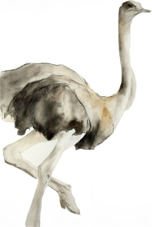 Medium Female Ostrich #2, 2015