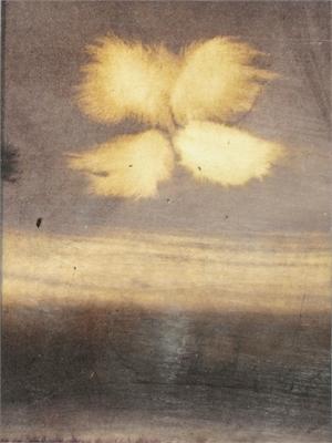 Flower II, c.1993