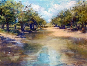Still Water by Barbara Stolberg