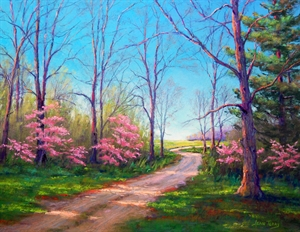 Redbud Blooming by Jean Terry