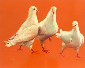 White Dove 47