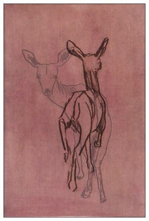 Deer Suite VI