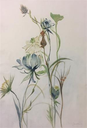 Late Summer Wildflowers 2