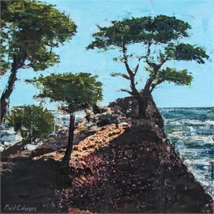 Lone Cypress, Pebble Beach by Plaid Columns