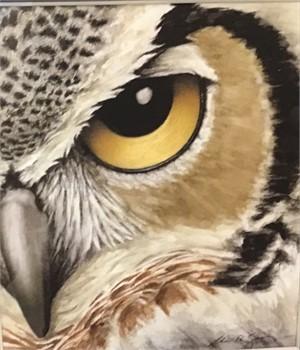 Yellow Owl Eye, 2019