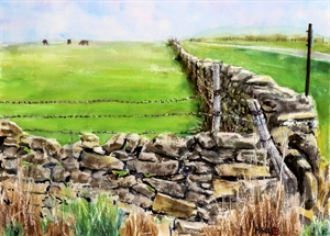 Stone Fence in Wabaunsee by C.T. (Fred) Hsia