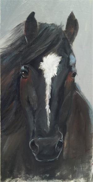 Dark Horse, 2016