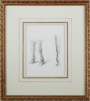 Horse and Pony Legs, Rothschild Collection, c1864