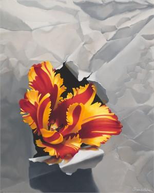 Tulip Bursting Through White Paper