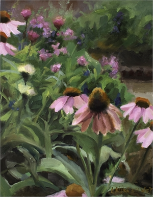 Good Morning Purple Coneflowers