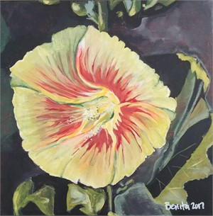 Yellow and Pink Hollyhock, 2017