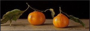 Two Satsumas, 2012