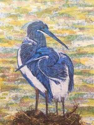 Tri Colored Heron Pair, 2020