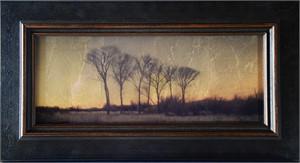 Trees Near Wilcox , Az.  (1/20), 2018