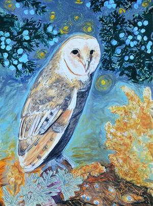 Barn Owl, 2020
