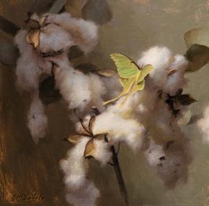 Luna Moth and Cotton Bolls