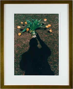 Self Portrait: Hold Still - Life Illusion, 2003