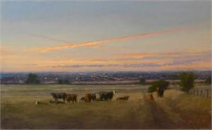 City Cows