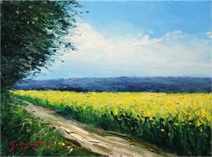 Mustard Fields, 2017