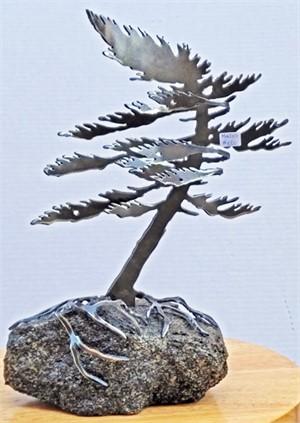 Dancing Pine, 3115