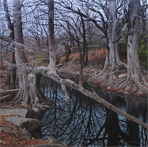 Onion Creek on New Year's Day