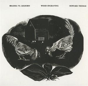 Brahma vs. Leghorn, 1937