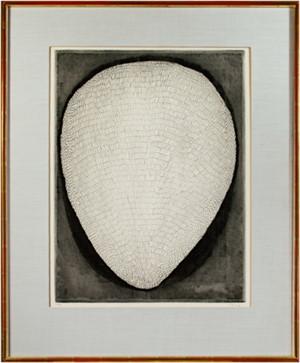 Shell (32/99), c. 1960