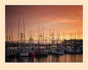 Newport Boats (Edition 1), 2016