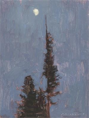 Waxing Moon and Night Pines