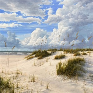 Breezy Beach Day