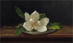 Magnolia, 2019