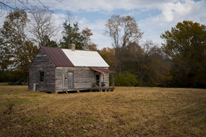 Cabine, Cascine, NC by Forest McMullin