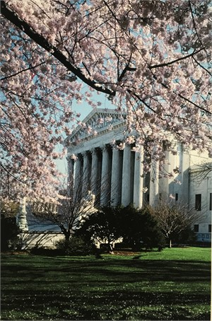 Supreme Court - Springtime , 1995
