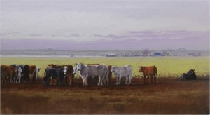 Cattle Line, 2019