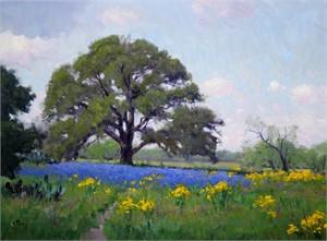 Spring Landscape, 2015