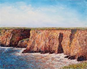 Central Coastal Cliffs
