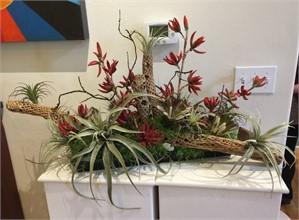 The Art Of Living - Cholla, Aloe, Protea, Tillandsia #1, 2019