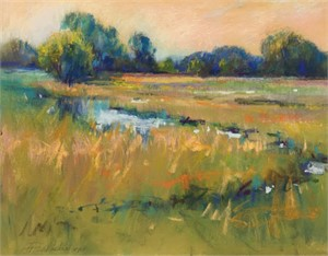 Wetland Stream