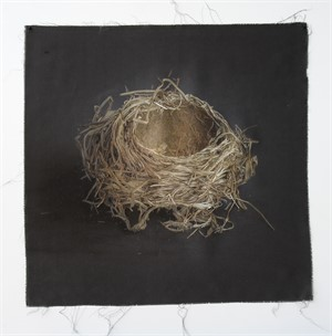 Untitled Nests #13 (1/20), 2018