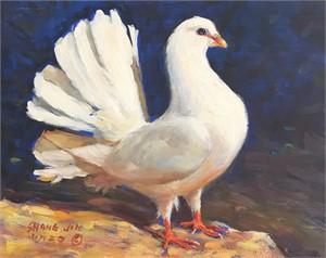 White Dove 25