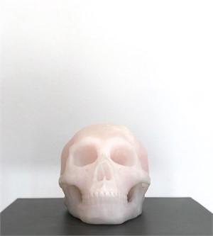 Human Skull III