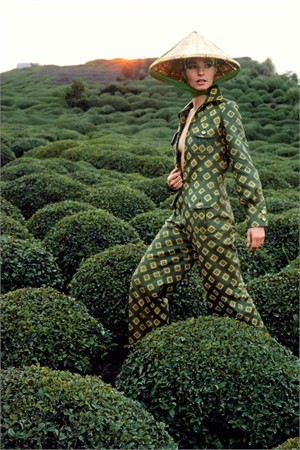 Japan: Tea Field at Shimizu (Edition 15/100), 1969